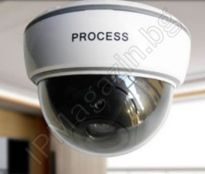 IP-FC004 - false, dumbbell, imitation dome camera for CCTV